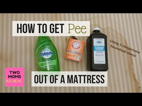 How to Get Pee Out of a Mattress in 5 Easy Steps!!! Over 200,000 Views!!
