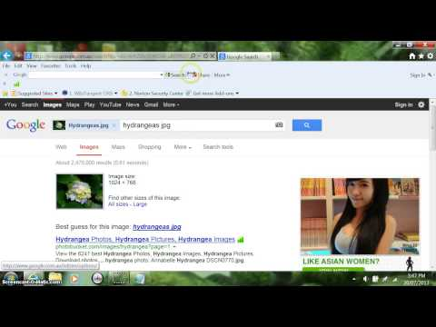 How to put a picture on Google Images