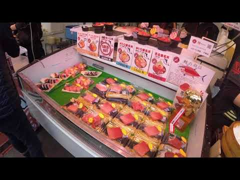 JAPAN 2018   PART 2   Tokyo | Shibuya, SkyTree, Tsukiji Fish Market | Japan Vlog