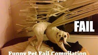 ANIMAL FAILS 😂 FUNNY PET Fails Compilation [Funny Pets]