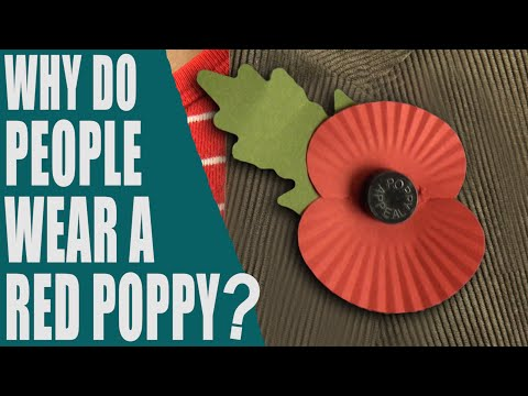 Why do people wear a red poppy? What is Poppy Day? Rememberance Day - English Topic
