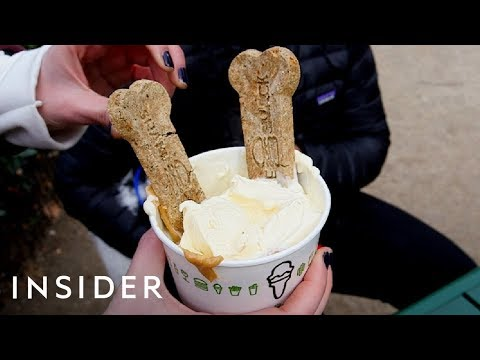 Shake Shack Offers A Dessert For Your Dog