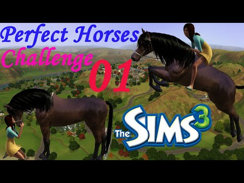 Let's Play: The Sims 3 Perfect Horses Challenge - Part 01 - Burglar!