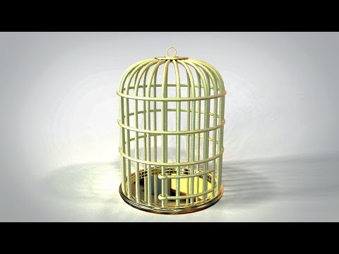 Maya 2016 tutorial : How to model a simple Bird cage