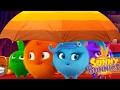 Dibujos animados para niños | Sunny Bunnies EL SOMBRERO | Dibujos divertidos para niños