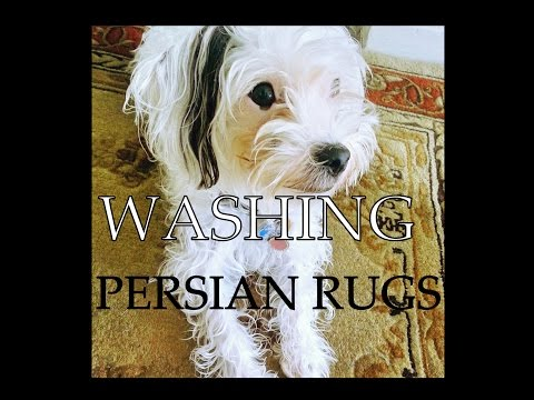 HOW TO CLEAN PERSIAN RUG BY HAND at home!
