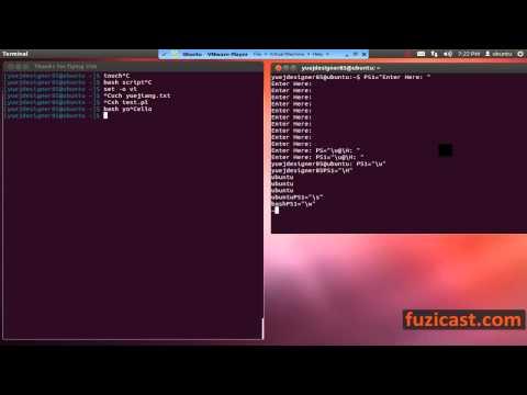 UNIX-1.10 Customize Command Prompt
