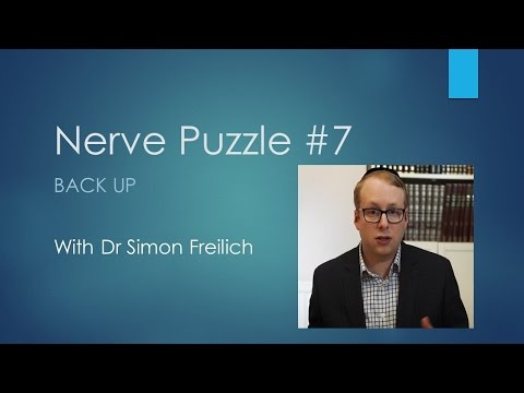 Nerve puzzle 7 - Back up - the neurophysiology assessment of sciatica