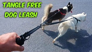 3 Tangle Free Dog Leashes Test