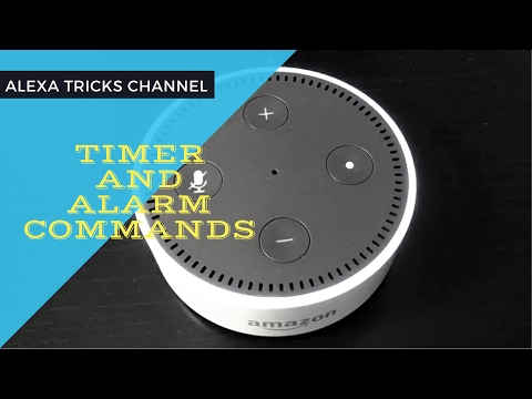 Top 10 Timer and Alarm Commands of Amazon Alexa