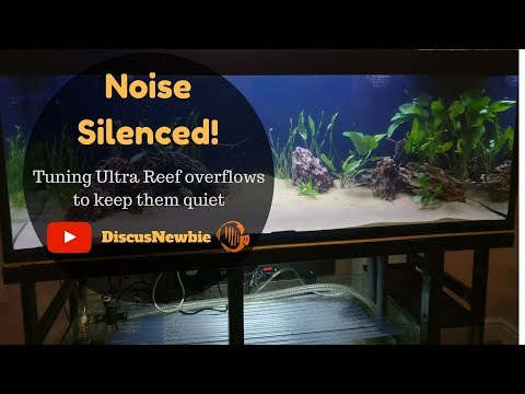 Noisy aquarium sump / overflows silenced! Ultra Reef overflow