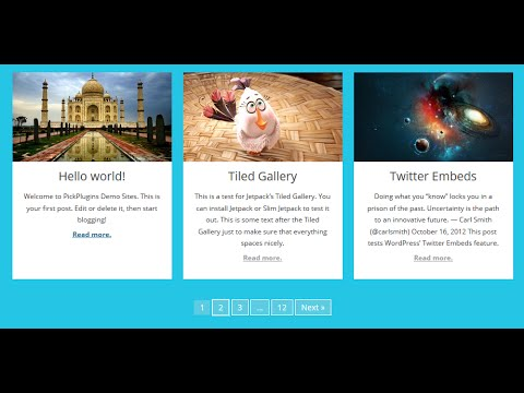 Post Grid - Create Awesoe Grid Style layout from Any Post Types for WordPress