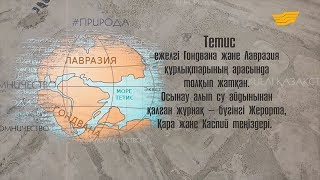Древний океан Тетис