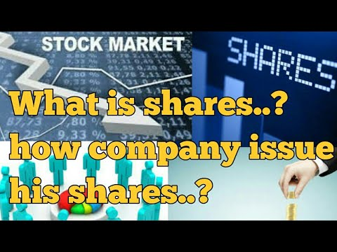 What is shares ?? What is Stock market ..how company issue shares|| shareholder of company.part 1||