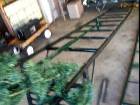 Christmas tree Deer stand 12-31-08 001