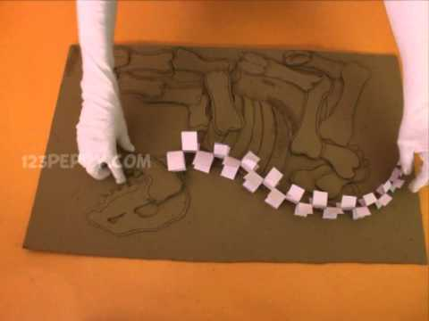 How to make a Dinosaur Fossile