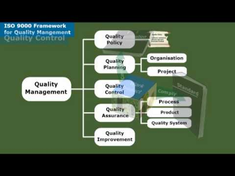 Applying the ISO 9000 Framework to IT Systems