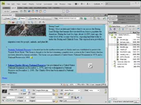 Fix Broken Image Link in Dreamweaver Design View