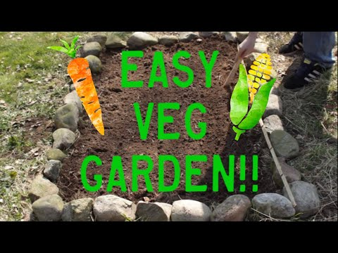 Planting Vegetables - How to Plant a Small Vegetable Garden