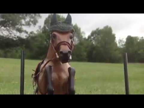 DIY Model Horse/Breyer jump🐴