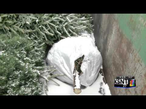 Christmas tree clean up 'need to knows'