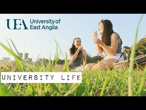 University of East Anglia    UEA VLOG X Mei-Ying Chow