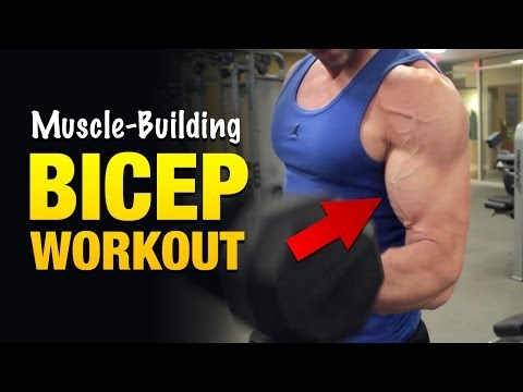 Bicep Workouts: Get Freaky Huge Biceps With This Vein-Pumping Arm Workout
