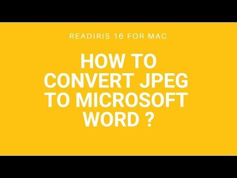 Convert jpeg to Microsoft Word using Readiris 16 for Mac