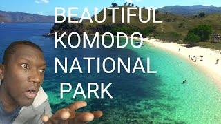KOMODO NATIONAL PARK REACTION, THOUGHTS AND RANT