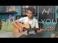 Ed Sheeran - Shape of You - Cover (Fingerstyle Guitar)