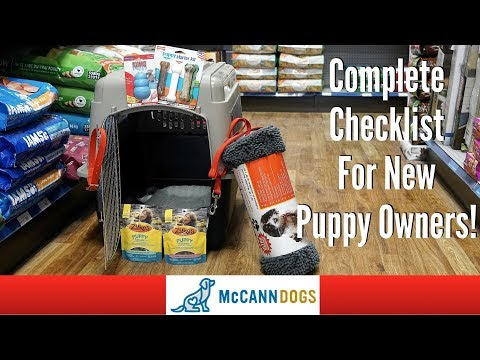 The 9 Things You'll Need For Your New Puppy