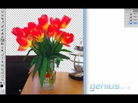 Cutting out objects in Photoshop CS5 for Video