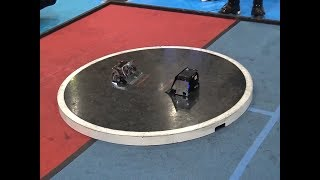 WATCH Japanese Sumo Wrestling Robots FIGHT!   What