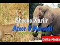 Sheekadii Atoorka Iyo Maroodiga By Ahmed Farah Ali Idaajaa