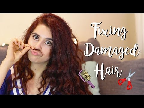 How I Fixed My Dry Brittle Hair (and made it grow!) | 6 Things