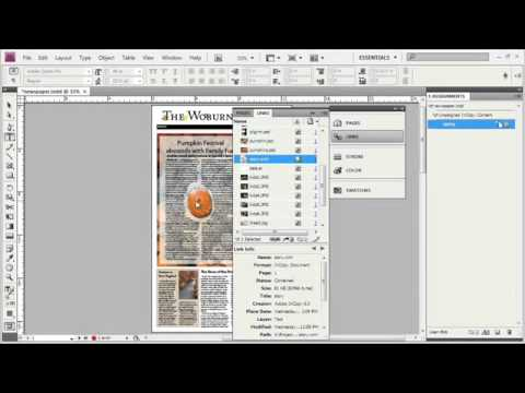 Adope Flash Tutorial CS4 Importing an InCopy File into InDesign