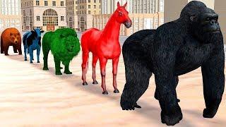 Los animales de granja y sus crías se transforman en animales salvajes en la Fuente 2