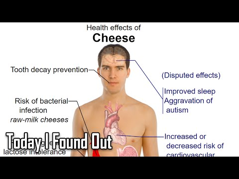 What Causes Lactose Intolerance?