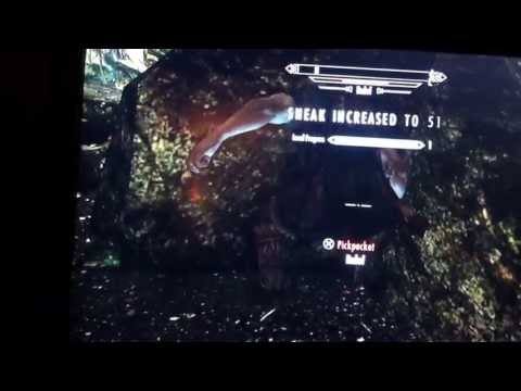 Skyrim - sneak fast leveling up to 70 in 3 mins