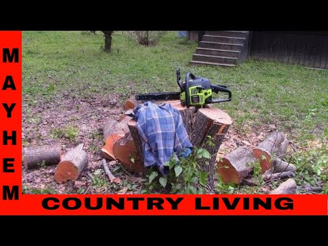 How to cut a tree with a chainsaw