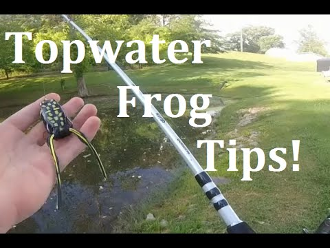 Pond Bass Fishing- Weedless Frog Tips!