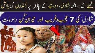 7 Interesting Wedding Rituals in Various Countries   Urdu/Hindi