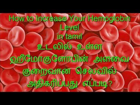 How to Increase Your Hemoglobin Level in Tamil -ஹீமோகுளோபின் அளவை அதிகரிப்பது எப்படி