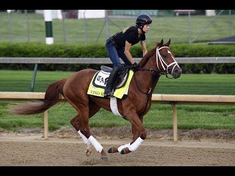 Three Longshot Betting Picks - 2018 Belmont Stakes Odds