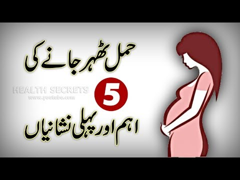 5 Most Common Early Signs And Symptoms Of Pregnancy || Pregnancy Test || In Urdu