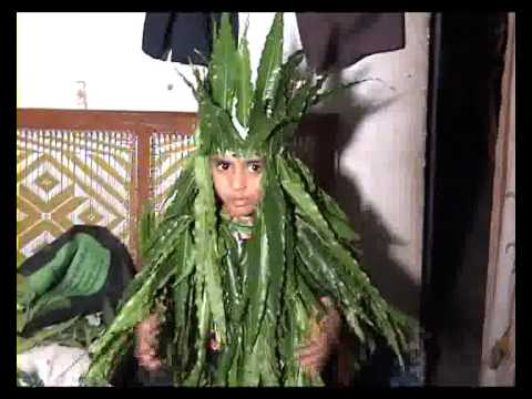 fancy dress compitition in tree form