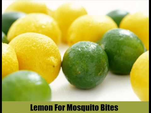 20 Home Remedies For Mosquito Bites