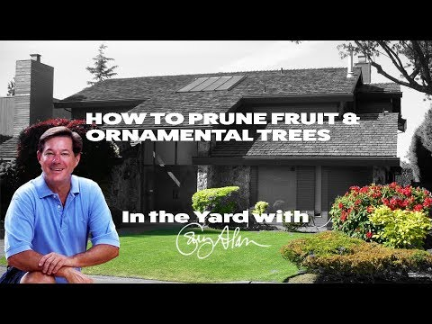 How to Prune Ornamental and Fruit Trees-In the Yard with Gary Alan
