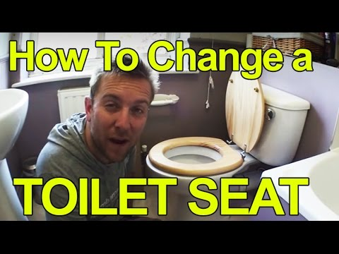 HOW TO CHANGE A TOILET SEAT - PLUMBING TIPS