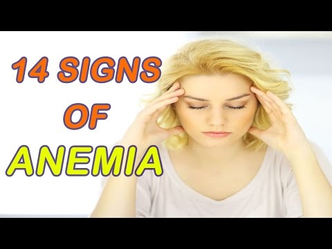 14 most common symptoms of anemia